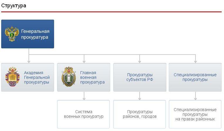 Структура прокуратуры рф реферат 8354